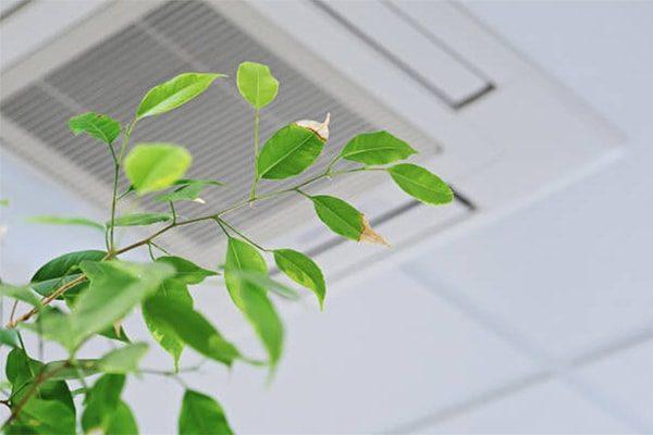 vvs lyngby ventilation sundt indeklima